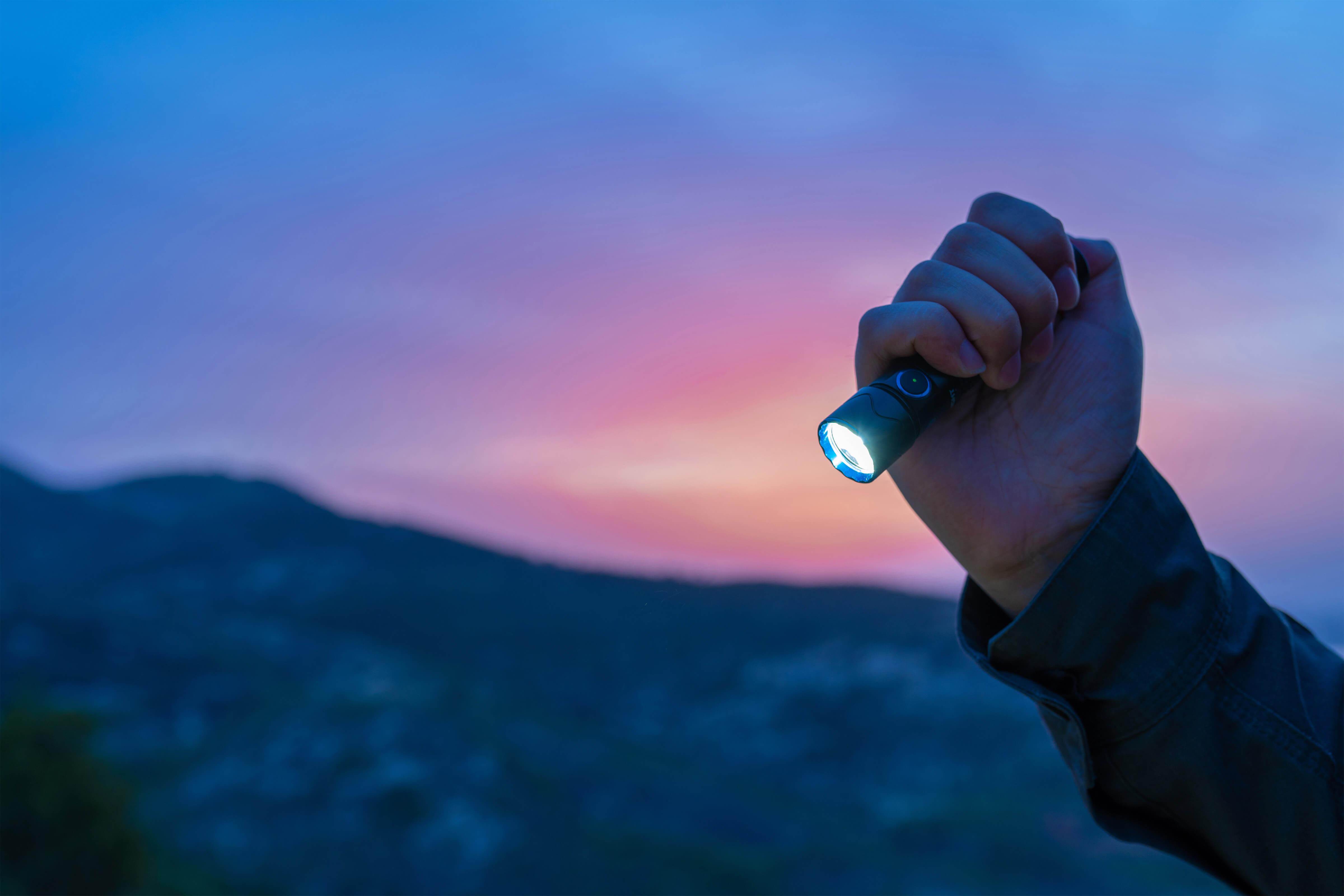 Was für eine Taschenlampe ist die Warrior Mini 2?